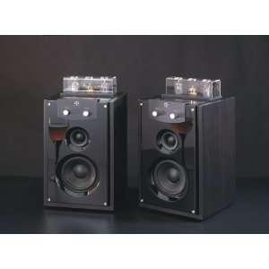 VAL M20 MK III Pure Vacuum Tube 2.0 Active Speaker System