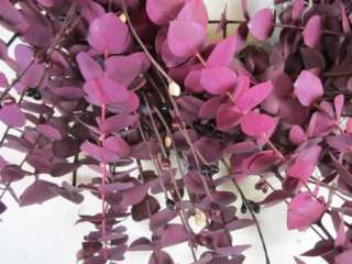 Country Burgundy Eucalyptus Wreath w/ Black Tan Burgundy Pip Berries