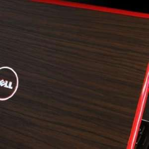 SGP Laptop Cover Skin for Dell Inspiron 13z [Walnut