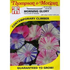 Morning Glory Carnevale di Venezia Seed Packet Patio, Lawn & Garden