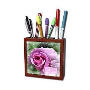 Patricia Sanders Flowers   Sparking Love Rose  Flowers