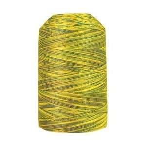King Tut Egyptian Cotton Thread   934 Nile Delta: Kitchen