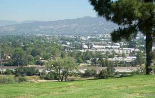 in Mt. Sinai Memorial Park, Forest Lawn, Hollywood Hills, CA
