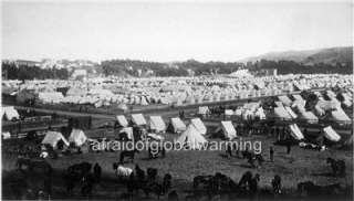Photo 1898 SF California Tents/Horses at Camp Merritt