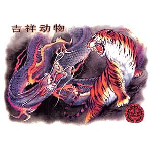 00341 American Tiger / Drachen Dragon Motiv T Shirt