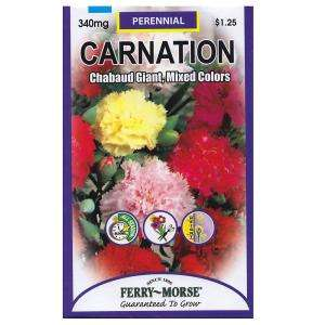 Ferry Morse Carnation Chabaud Giant Mixed Color Seed 8005 at The Home