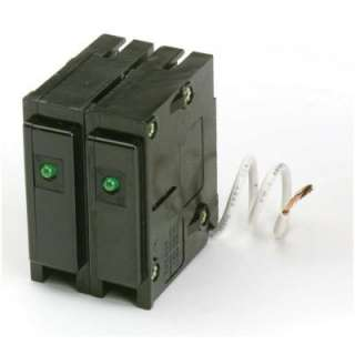 Eaton Cutler Hammer 15 Amp 2 in. Double Pole Type BR Plug In Surge