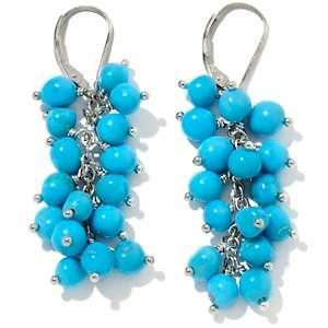 Sleeping Beauty Turquoise Sterling Silver Drop Earrings