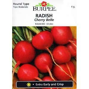 Burpee Cherry Belle Radish   400 Seeds Patio, Lawn