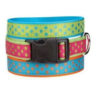 East Side Collection ZA8211 Polka Dot Dog Collar Baby