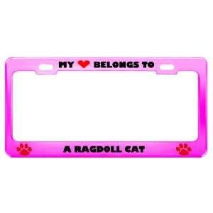 Ragdoll Cat Pet Pink Metal License Plate Frame Tag Holder