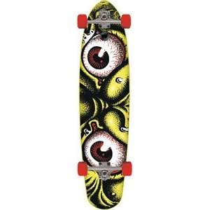 Santa Cruz Roskopp Eyes Complete Skateboard   10x43.5