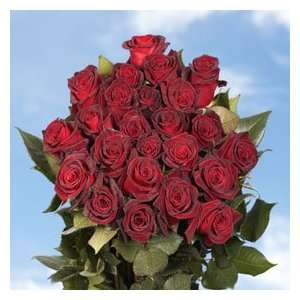 Black Baccara Roses 100  Grocery & Gourmet Food